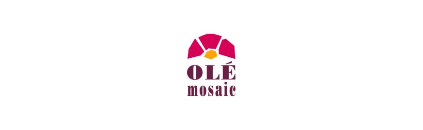 Olé Mosaic | Figuras Decorativas en Mosaico
